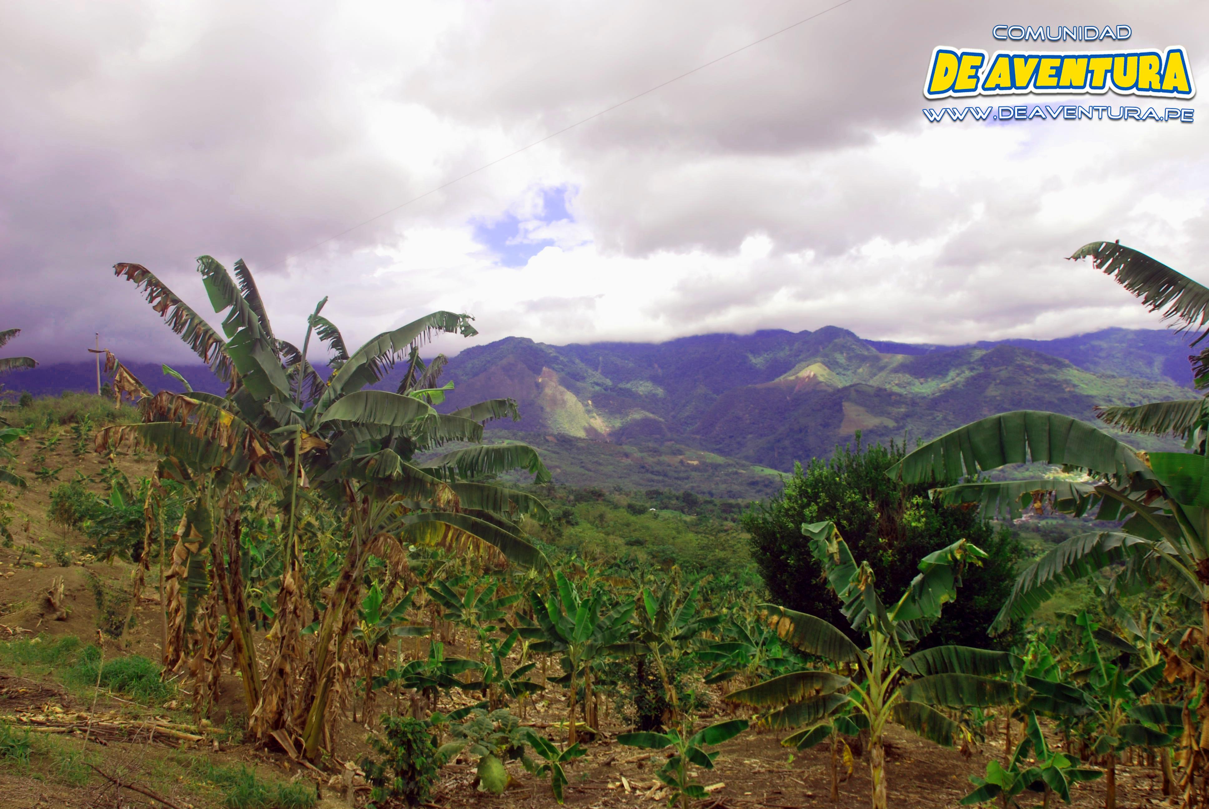 aventura en la selva en Tarapoto