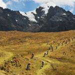 inca avalanche 2016