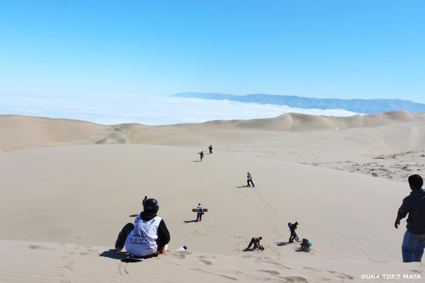 Duna-Toro-Mata-Arequipa