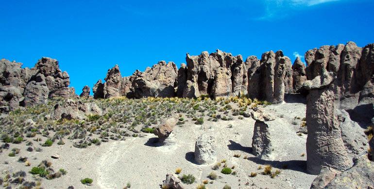 bosque de piedra imata