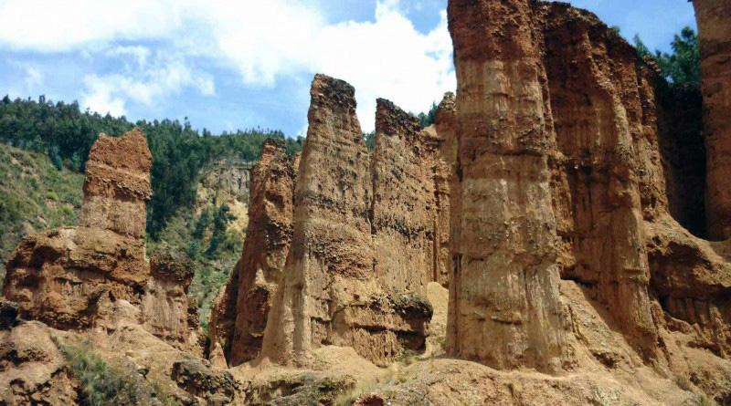 bosque de piedra torre torre